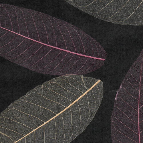 Black Pink:Cream Large Leaf Natural Wall Covering