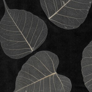 Black & White Natural Leaf Wall Covering