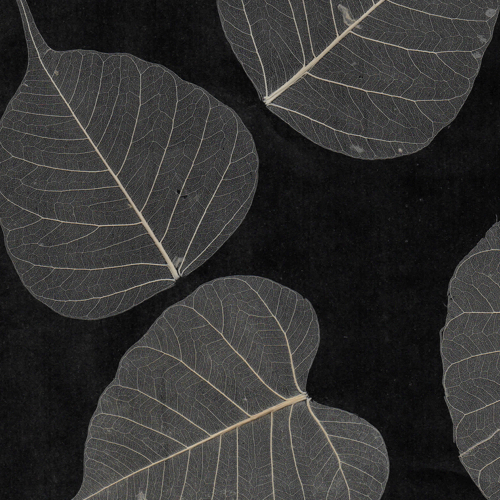 Black And White Natural Leaf Wall Covering