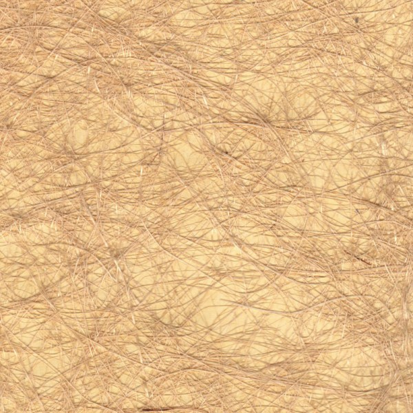 Golden sands handmade jute wallpaper the natural for Lisbon cork co ltd fine cork flooring